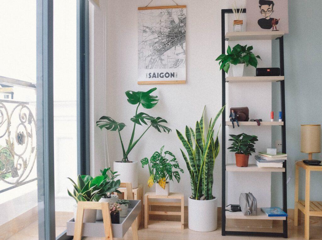Φτιάξτε μικρούς κρεμαστούς κήπους μακριά από το δάπεδο του σπιτιού, χρησιμοποιώντας φυτά πάνω σε ράφι,