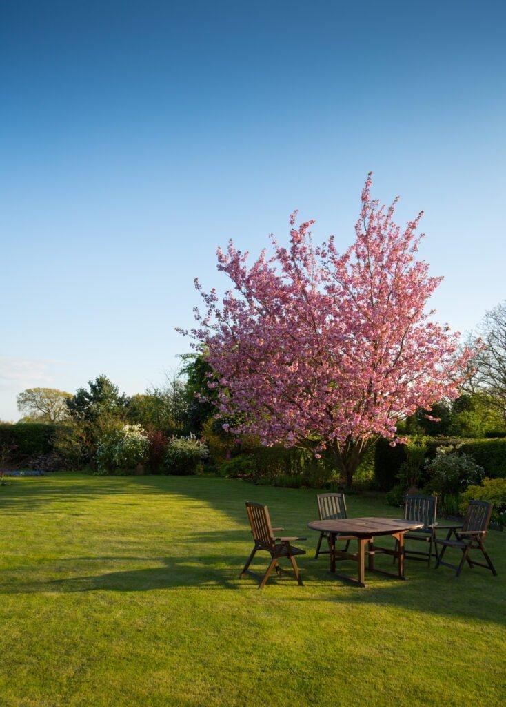 Η οικολογική κηπουρική βοηθά τα φυτά και το περιβάλλον, την φύση και τον άνθρωπο.